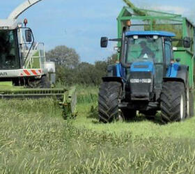 Arable Silage Mix 1
