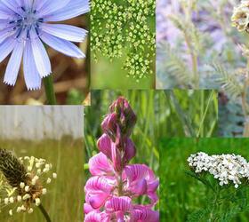 FS Mixed Herbs