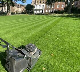 FS Quality Hard Wearing Lawn Seed