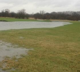 FS Waterlogged and Wet Soils Grass Seed