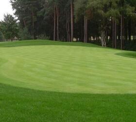 FS Bowling Green Grass Seed