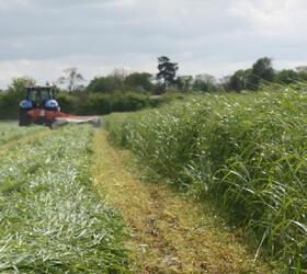 FS Italian Ryegrass Blend - 1-2 Year Ley Mix