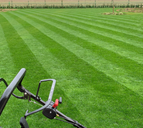 FS Premier Lawn Grass Seed